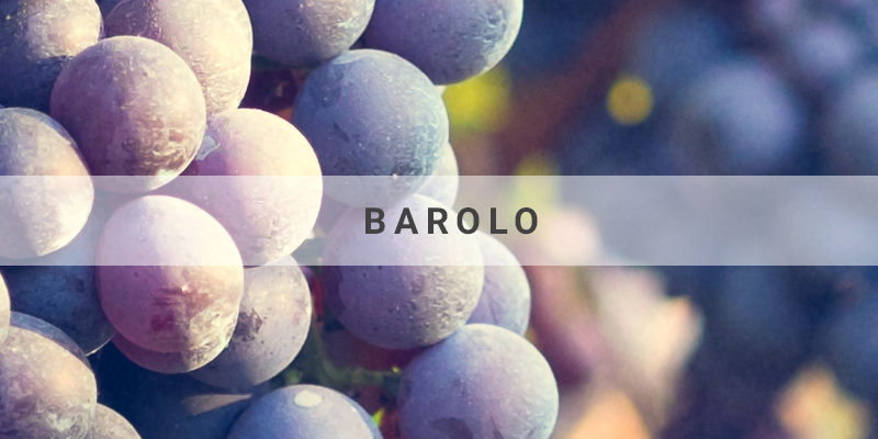 barolo small