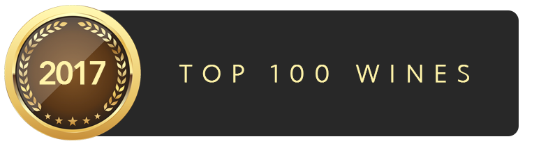 2017 Top 100 icon